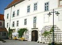 Schloss Traismauer