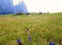 Schlern Nature Park
