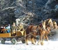 Kinderadvent mit Pferdekutschenfahrt - Hohe Wand Niederoesterreich