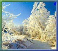 Winter in Haslach a.d.Mühl | Böhmerwald | Oberösterreich | Österreich - Haslach a. d. Muehl Oberoesterreich