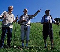 Auf in den Süden! Herzlich Willkommen im Südlichen Waldviertel! Bild - Ysper-Weitental Niederoesterreich