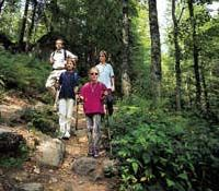 Wanderergruppe - Arberland Bayern