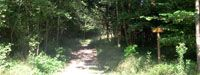 Naturalist path