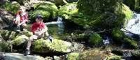 Bärnlochweg Trail