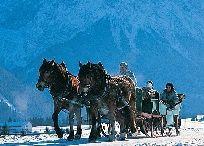Pferdekutschenfahrten Dietrich