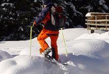 Snowshoe Walk
