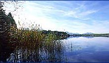 Bannwaldsee