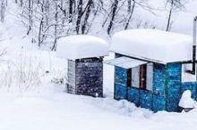 Sauna Wagen am Seewaldsee (Fontanella)