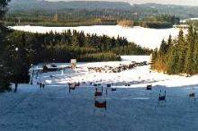 Liebenau Ski Area