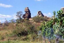 Wanderung Stein und Wein