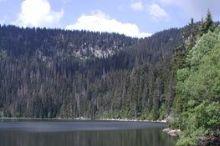 Naturatrail (12,5 km)