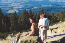 Dreisesselberg (11,2 km)
