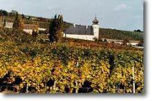 Freigut Thallern Wein GmbH