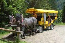 Pferdekutschenfahrten Umbalfälle