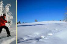 Schi- und Schneeschuhtour Bodenwies