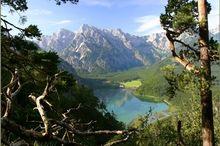 Almsee - Natur- und Landschaftsschutzgebiet