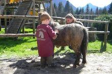 Pferdeerlebnisprogramm Roithhof