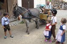 Eselkutschenfahrten für Kinder in Grünau