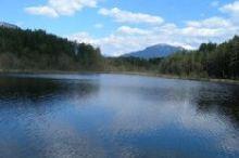 Walk along the Southern Lakeshore - Lake Egelsee