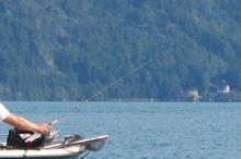 Attersee - fishing license