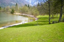 Dog Bathing Area/Lake Hallstatt