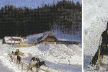 Naturrodelbahn - Hochsteinalm