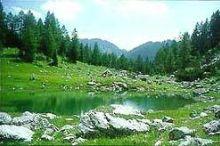 Brunnsteiner See-Teichlboden/Hochmoor