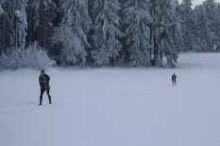 Langlaufen/Langlaufloipe in Brunn am Wald