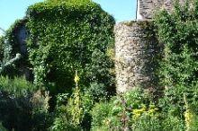 Maissauer Heilkräutergarten
