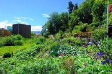 Carinthian Botanic Center - Botanic Garden