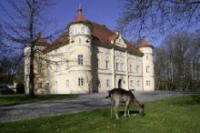 Schloss Mageregg