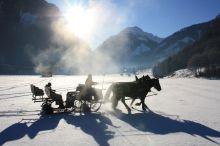 Pferdeschlittenfahrt für Kinder