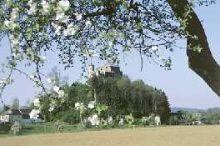 Burg und Schloß Haimburg