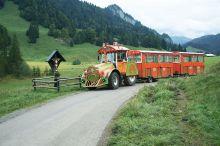 Fahrt mit Kurt's Dorfzügle nach Schönenbach