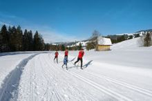 Cross Country Skiing Tracks