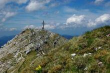 Achenkirch - Seekaralm - Seekarspitze (2.053 m)
