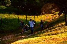 Wandern im Eferdinger Landl