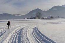Almtal Loipe - Almegg 12 km