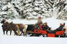 Pferdeschlitten-Kutschenfahrten Huben