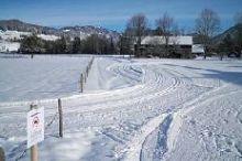 Winterwanderweg + Loipe