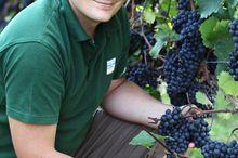 Weinbau Gmeiner Weinbauzentrum OÖ