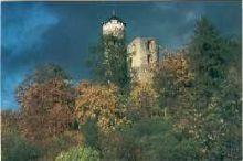 "Ruine ""Hallenburg"""