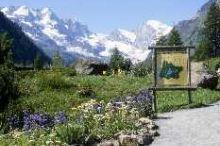 Alpinegarten Paradisia