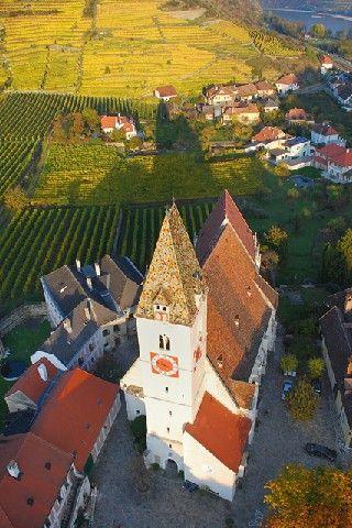 Die Wachauer Marille genießt ob ihrer hohen Qualität europäischen Schutz! - Spitz Niederoesterreich
