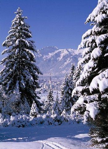 Breitenwang Tirol