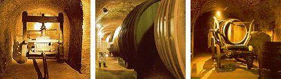 The largest winecellar in central Europe - Retz Lower Austria