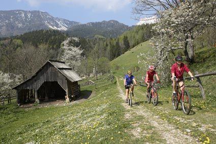 Mountainbiken im Bärental © Jörg Schmöe - Carnica-Rosental Kaernten