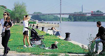 Neue Donau Bild - Neue Donau Wien