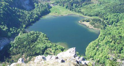 Laudachsee Bild - Laudachsee Gmunden