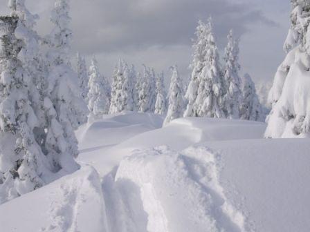 Winterlandschaft in Lassing - Lassing Steiermark
